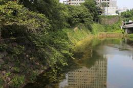 【江戸城】弁慶橋から弁慶濠の東端を撮影。奥の石垣がやや正面を向いているが、この石垣が赤坂見附に続いている。<br><br>      ちなみに、弁慶橋は江戸時代にはなく、明治に架けられた。