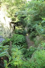 【鎌倉城】名越切通の高所から地上を撮影。<br><br>      当時は木々を切り払って、見晴らしはよかったはず。<br>      手前には防御用の盾を置き、その隙間から眼下の寄せ手を狙ったのはなかろうか。