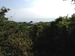 【鎌倉城】名越切通の高所からの眺め。<br><br>      木々でよく見えないが、南西の小坪方面を撮影。名越切通から痩せ尾根続きに、小坪の住吉城まで防御線が張られ、三浦からの動きに備えていた。<br><br>      この写真はiPhoneで撮影。やはり、一眼レフで撮るべきだった。。