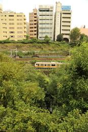 【江戸城】神田山を崩したというのが、何となく伝わるだろうか。対岸は駿河台で、写真の下の黒い部分が神田川。外堀の中段あたりをJRの電車が頻々と行き交っていた。