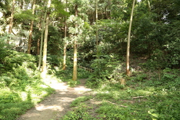【鎌倉城】30m程度で、大仏切通しへ。<br>      名越切通しと同じく、誰もいない。