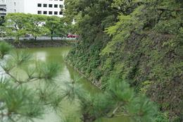 【江戸城】清水門の高台から、清水濠を撮影。