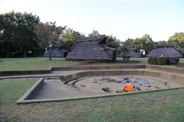 【大塚遺跡】復元された竪穴住居。<br>      まだ、発掘調査が行われているようだ。