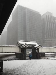 【江戸城】雪の大手門の高麗門。<br>      高麗門をくぐる人、高麗門、その後ろにあるビルの規模感が分かる一枚。