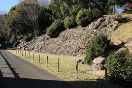 【石垣山一夜城】見落としやすいが、南曲輪の南側斜面に、野面積みの石垣が良い状態で残っている。<br><br>      ここを進むと、大堀切で、左側に出丸がある(公園化されていない)。