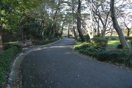 【江戸城】この辺に、松の廊下があった。<br>      松の廊下は、忠臣蔵で有名な刃傷沙汰の現場。<br>      中央やや左に、松の廊下の案内板と石碑がある。