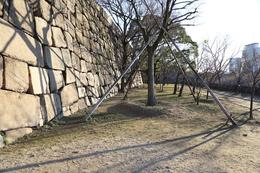 【大阪城】隠し曲輪。<br>      石垣には、担当した藩の刻印が刻まれている。