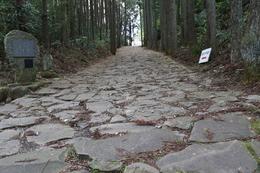 【山中城岱崎出丸西側、箱根旧街道の復元石畳】<p>箱根旧街道の復元された石畳。<br>山中城岱崎出丸から側射される位置にある。<br><br>江戸期の1680年頃には、石畳に改修されたとのこと。<br>そのため、小田原戦役(1590年)の山中城攻防戦の時には、まだ土の道だったはず。<br><br>岱崎出丸攻撃隊の右翼先鋒は中村一氏隊で、中村隊の下に渡辺勘兵衛了(さとる)もいた。渡辺勘兵衛は山中城の一番乗りしたとされ、この戦いの回想録を『渡辺水庵覚書』としてしたためた。<br>当時、彼もこの辺を必死に走ったのではないか。</p>