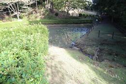 【山中城の田尻の池】<p>田尻の池は馬用の飲料水に使われたという。<br>手前に見えるように、田尻の池から三の丸堀に排水された。</p><br><p>右奥に、将兵飲料用の井戸(箱井戸跡)がある。</p>