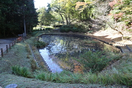 【山中城の箱井戸跡】<p>箱井戸跡。将兵用の飲料水に使われたとのこと。<br>西側の田尻の池よりも標高が高く、ここから田尻の池に水が流れた。<br><br>現在は睡蓮が植えられている。</p><br><p>奥に進むと、馬飲料用の田尻の池がある。</p>