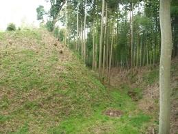 【本佐倉城のセッテイ空堀】<p>比高が10mもあるという大きな空堀(倉跡とセッテイ間の空堀)。<br>セッテイは人質郭と考えられているとのこと。</p>