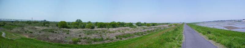 【利根川中流域、古河付近の風景】<p>利根川中流域、古河付近の広大な平野。ここから北に進むと、古河公方の古河城があった。<br>2010年5月、自転車ではじめて来たのだが、その広さに驚いた。</p> <p>iPhoneなき時代で、場所はかなり大雑把。</p>