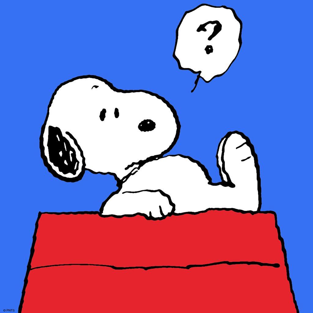 由查尔斯·舒尔茨创造的世界级人气卡通形象,史努比。诞生至今已经过了66年,人气仍然经久不衰。