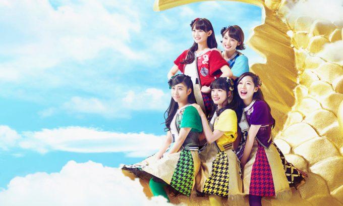 http://team-syachihoko.jp/news/