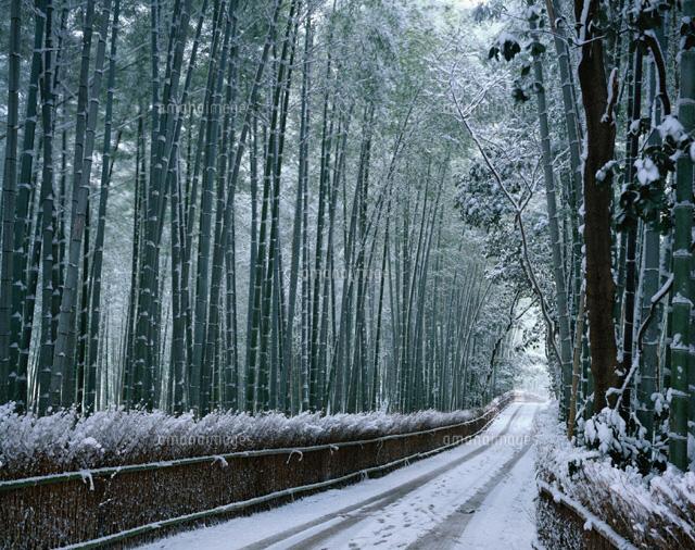 京都,冬,デート,スポット,おすすめ,観光,画像