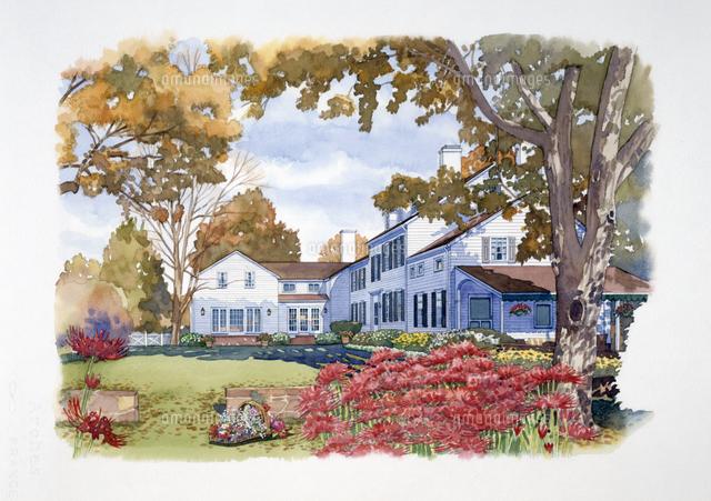 花壇のある庭の風景 秋 水彩 ...
