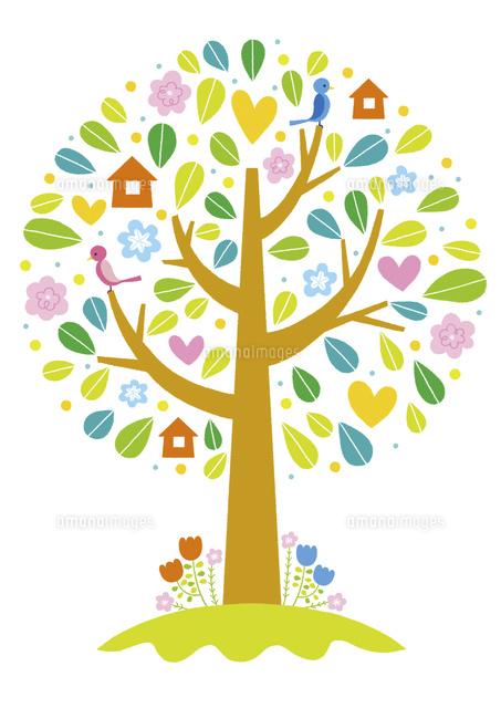 鳥の巣箱があるカラフルな木 (c)Asterisk