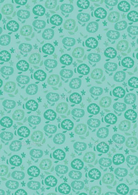 花のパターン (c)megumi masubuchi