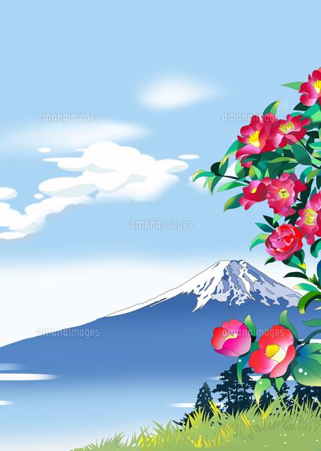 寒椿と富士と雲 (c)KAWANO Ryuji