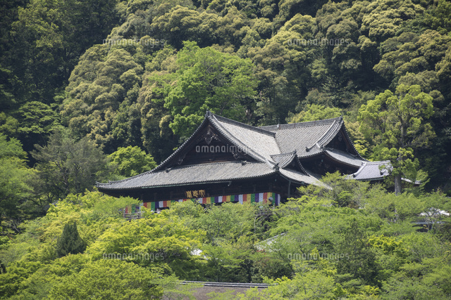 新緑の長谷寺本堂(写真中央) (c)JUN KANEMATSU/SEBUN PHOTO