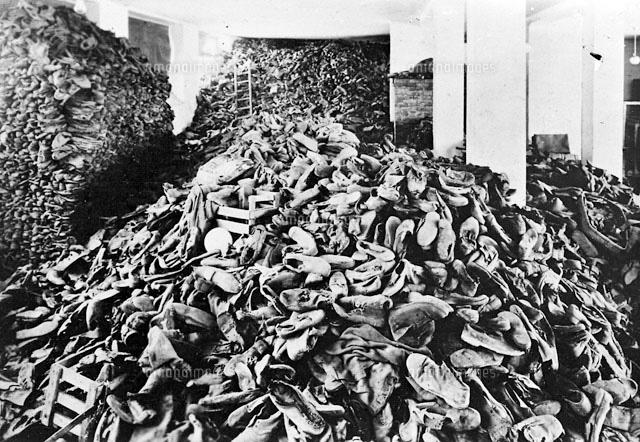 アウシュヴィッツ強制収容所の画像 p1_31