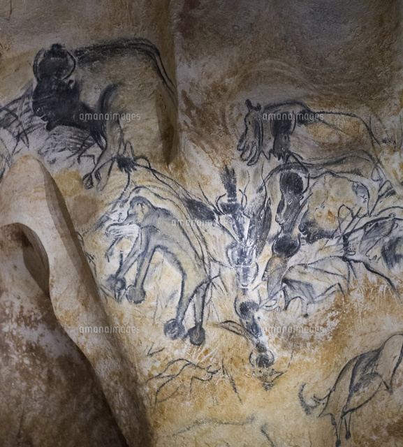 ショーヴェ洞窟の画像 p1_28