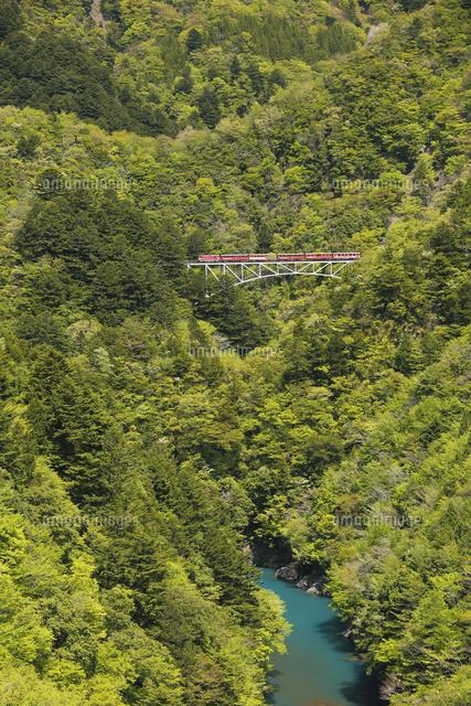 「井川線 関の沢」の画像検索結果