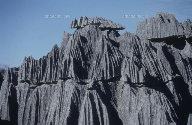 ツィンギ・デ・ベマラ厳正自然保護区の画像 p1_16