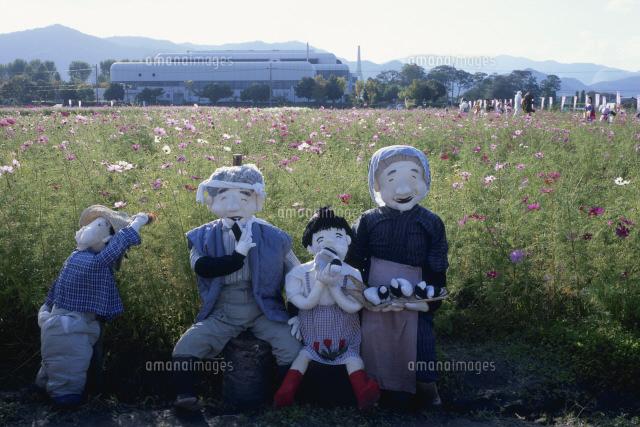 コスモス畑でおにぎりを食べる人形 (c)YASUO MUROTA/SEBUN PHOTO
