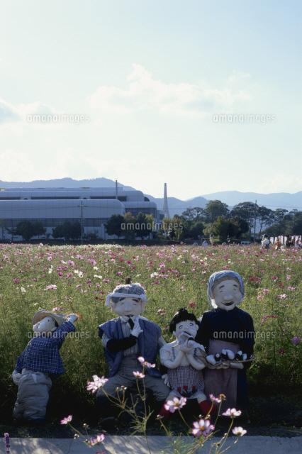 コスモス畑 (c)YASUO MUROTA/SEBUN PHOTO
