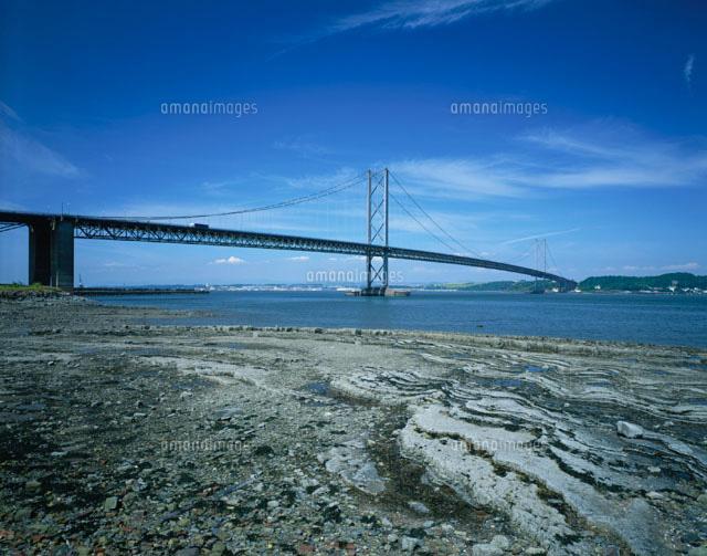 フォース橋の画像 p1_36