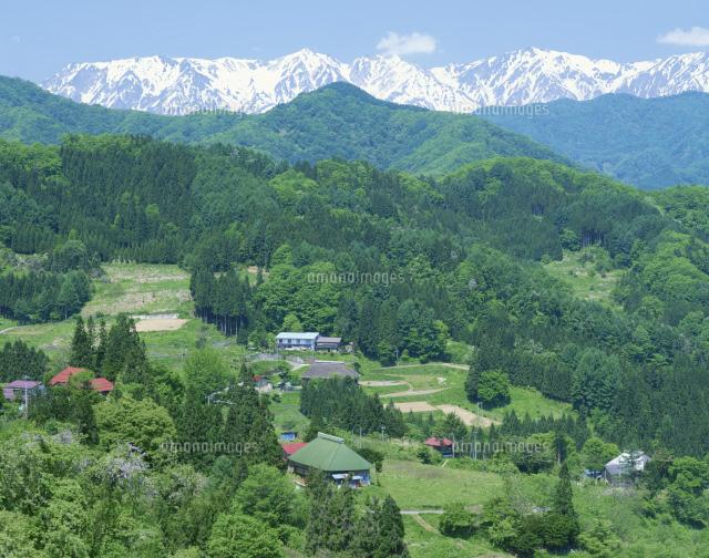 山村と北アルプス[25705001584]| 写真素材・ストックフォト・画像 ...