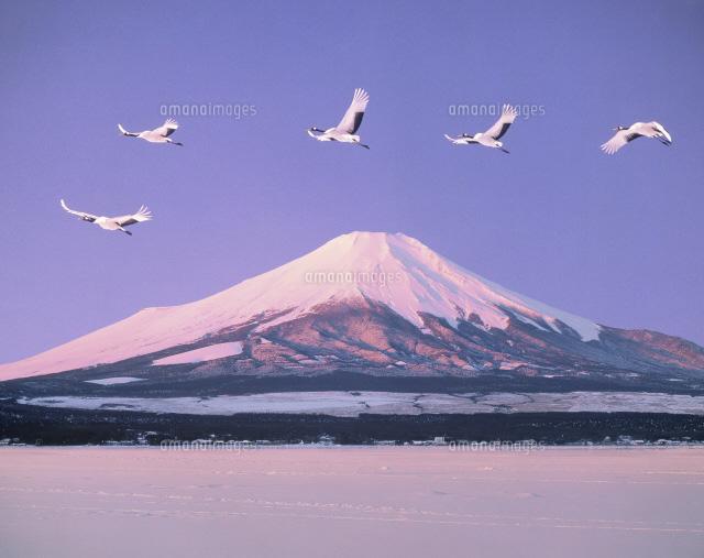 【美しい国】日本が大好きな奥様集合33【ニッポン】 [転載禁止]©2ch.netYouTube動画>15本 ->画像>291枚