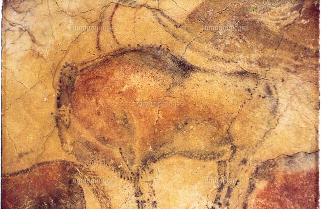 アルタミラ洞窟の画像 p1_30