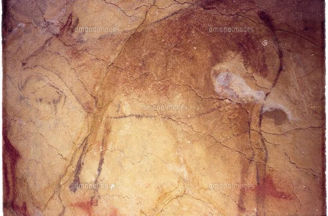 アルタミラ洞窟の画像 p1_22