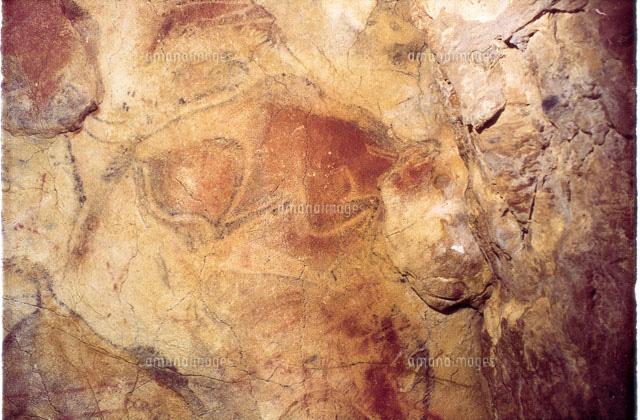 アルタミラ洞窟の画像 p1_25