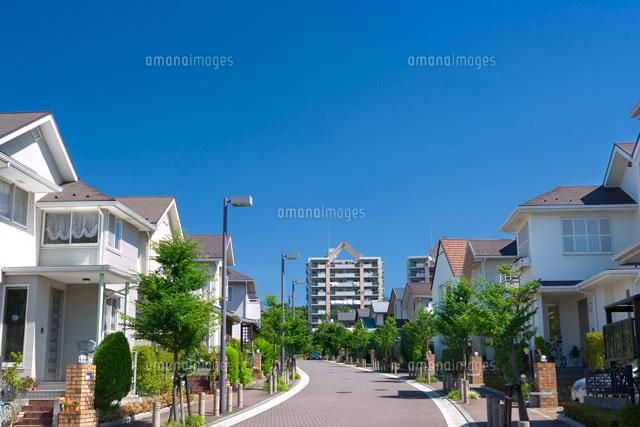 新緑の新興住宅地[25991001349]...
