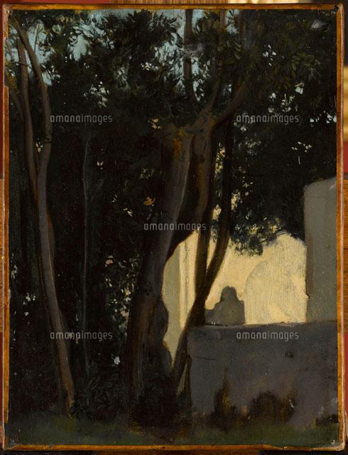 Fontaine dans les lauriers rome jardins de la villa for Jardin villa medicis rome