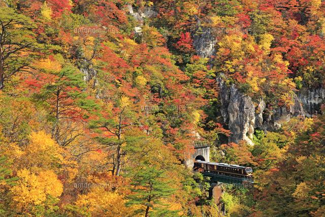 JR陸羽東線のリゾートみのりと紅葉の鳴子峡
