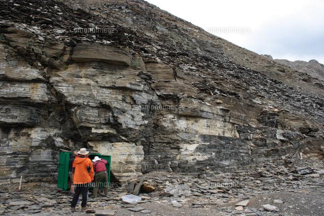 バージェス頁岩採掘場周辺(緑色...