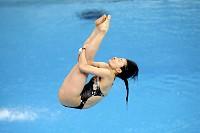 水泳競技 kishimotoのニュース・...