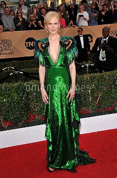 The 23rd Annual Screen Actors Guild Awards