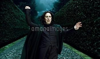 『ハリー・ポッターと死の秘宝 PART1』 2010