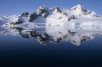 Ice clad mountains dropping directly into the sea, Paradise Bay, Antarctica Peninsula, Antarctica