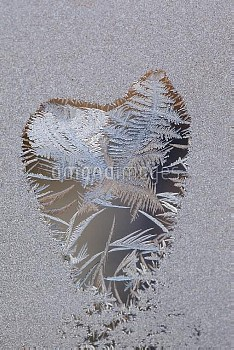 Frost forming heart shape on window