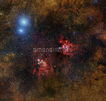 Cat's Paw nebula, optical image