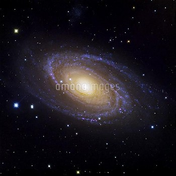 Bode's Galaxy (M81), optical image