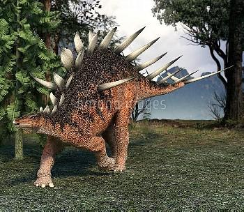 Kentrosaurus dinosaur, artwork