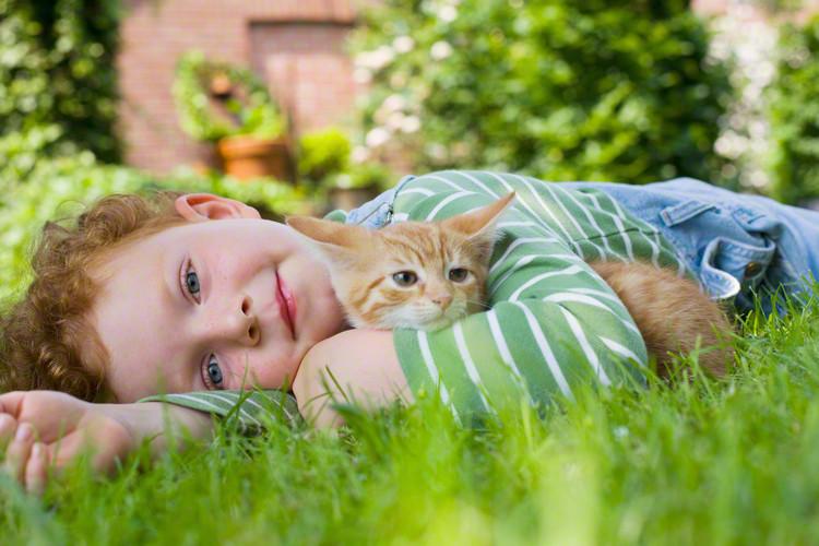 ハイハイして近づいた赤ちゃんに猫は…? 癒される動画まとめ[第3弾]のタイトル画像