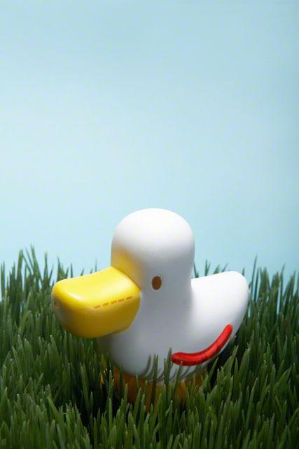 トイレトレーニンググッズ7選!おすすめの絵本・おまる・補助便座のご紹介!の画像3